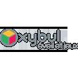 logo xybul